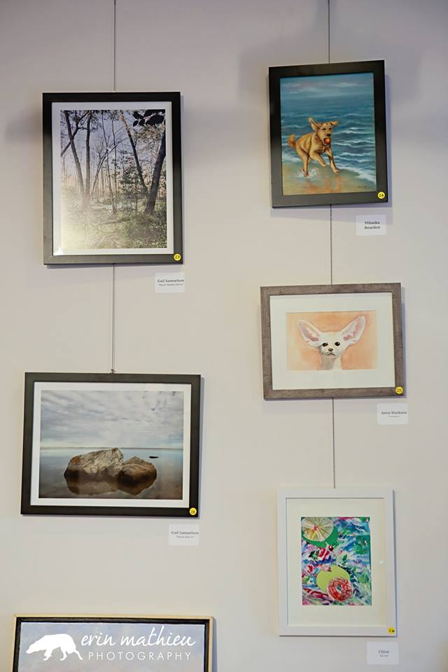 Art Auction Fundraiser 15.jpg