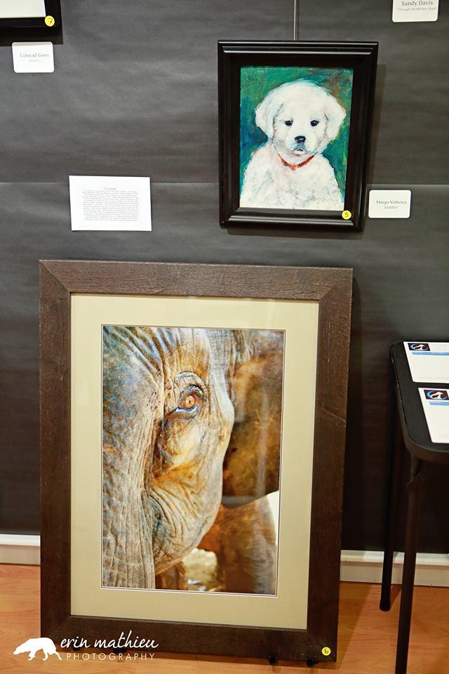 Art Auction Fundraiser 16.jpg