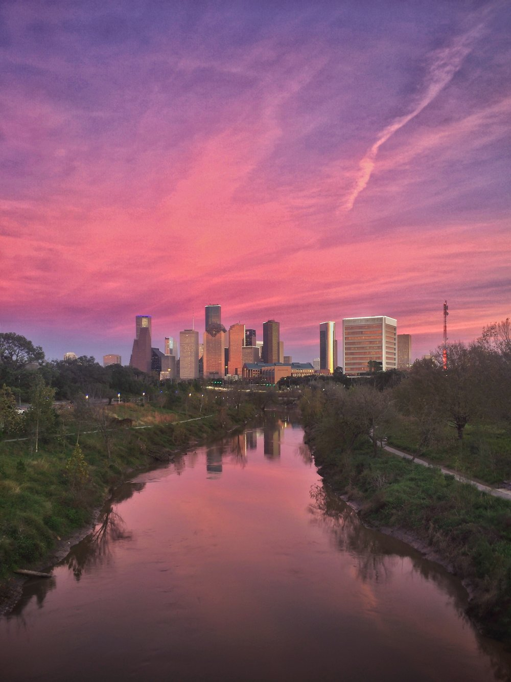 This is the first photo I took this year: January 3, 2017 along Buffalo Bayou.
