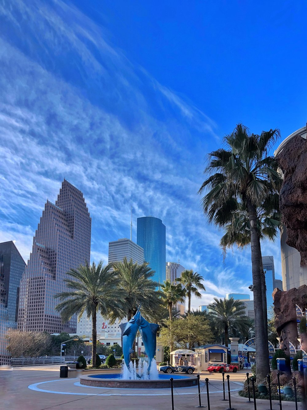 View from The Downtown Aquarium