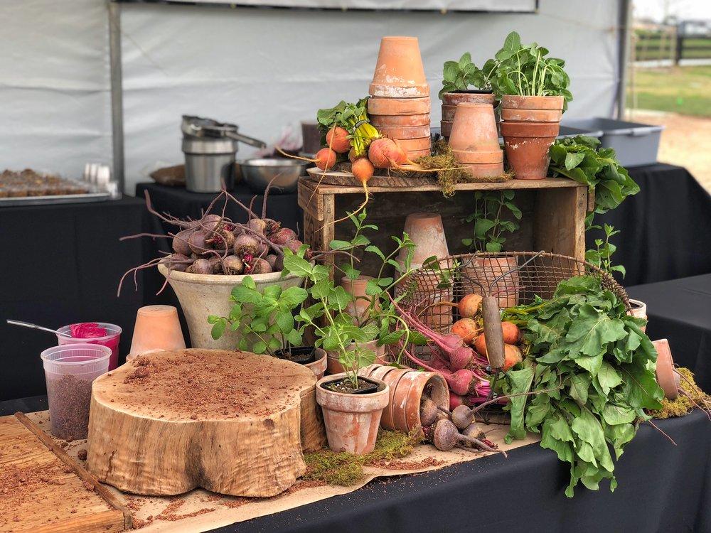 chef-fest-2018-4.jpg