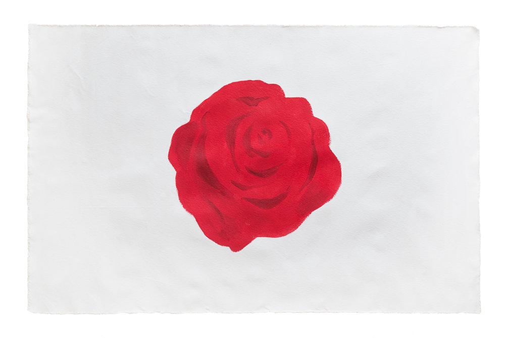 roses_03.jpg