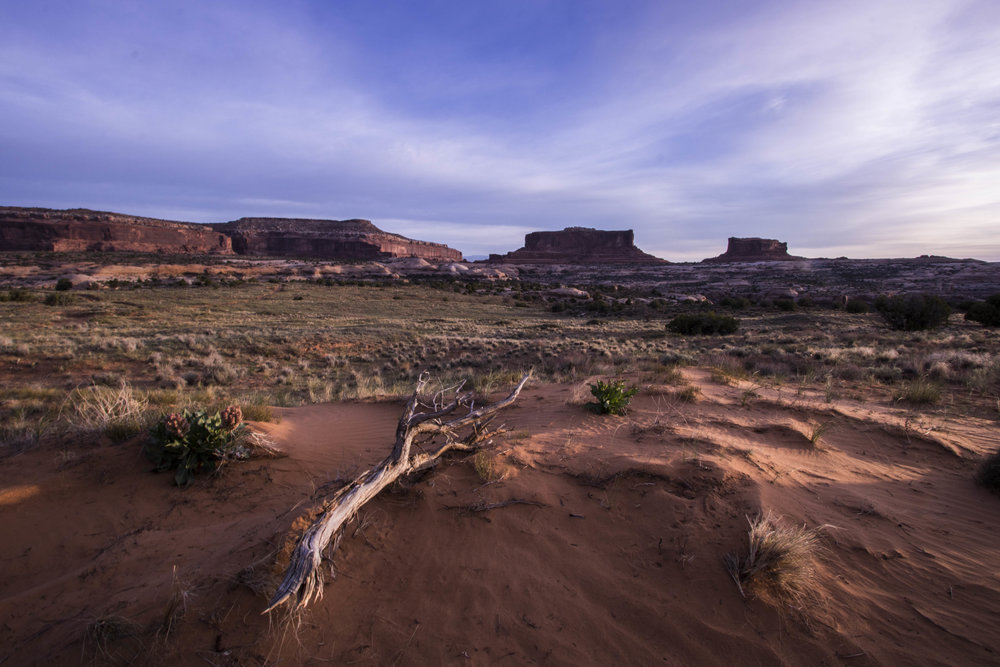 2017 Canyonlands-Moab-50.jpg