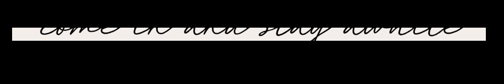 ELANA_DESIGNS_INTERIOR_DESIGN_MARYAND