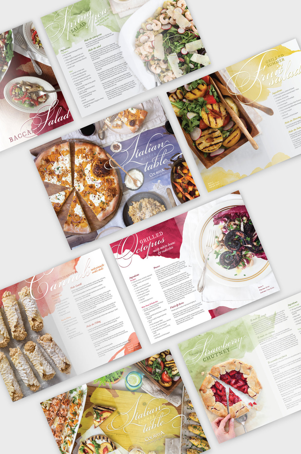 Colavita-Cookbook-Recipe-Design-Brochure-Watercolor.jpg