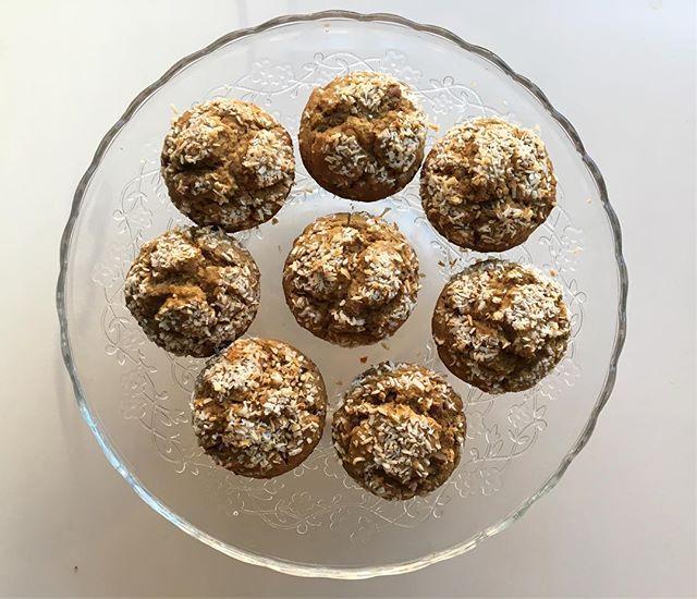 Reward yourself for surviving that messy slushy commute! Muffins (GF!) quinoa, pecan, golden raisin! 👌