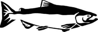 salmonWebsite.jpg
