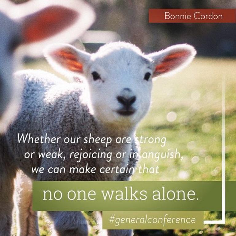 Cordon - sheep.jpg