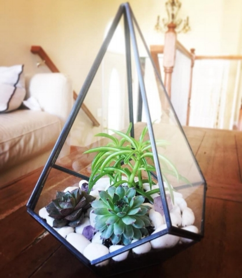 Geometric Terrarium Workshop