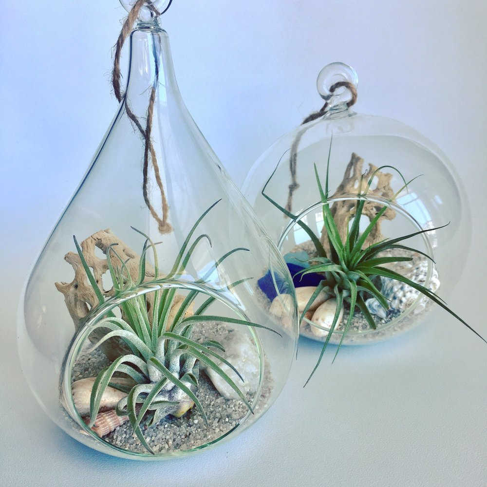 Hanging Glass Gardens
