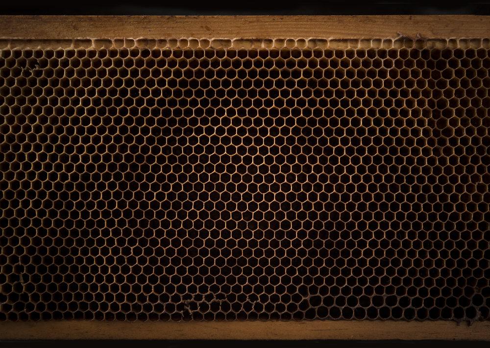 Honeycomb B.jpg