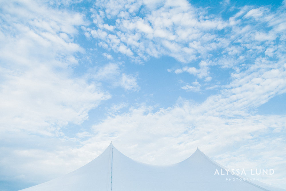 Minnesota Backyard Wedding-13