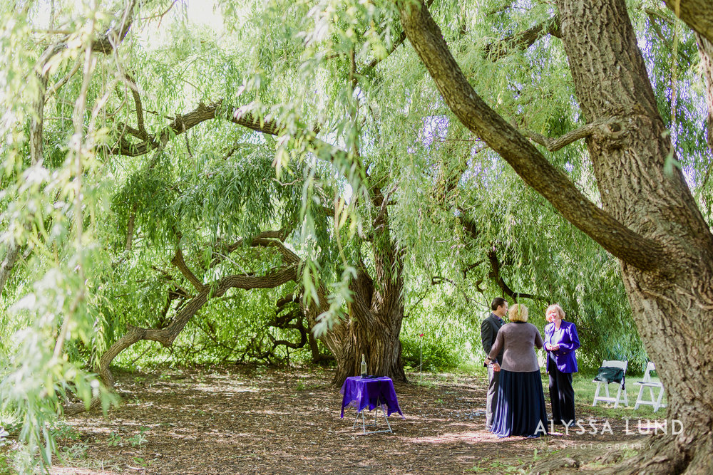 elopement small wedding at the Minnesota Landscape Arboretum-04.jpg