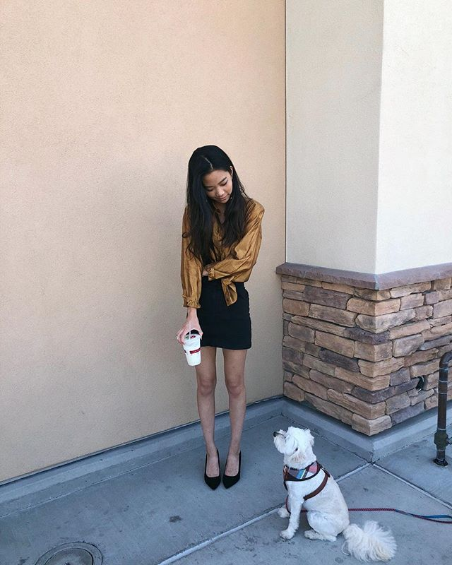 This is my dog ziggy 🐶 He's the only one who's always trying to steal my food, but I guess it's ok . . . . @burberry #LAblogger #nyfwstreetstyle #nyfw2018 #phillyblogger #gettingsomewhere #blogwithme #fblogger #collegefashionista #collegefashion #fashionblog #losangelesblogger #sandiegoblogger #newyorkstreetstyle #nycbloggers #newyorkfashion #springfashion #livelovebeauty #wfb #ootdsubmit #closetjunkie #cfashionista #fashiondiary #ootdpage #newyorkfashion #socalstyle #lastreetstyle #socalblogger #sdblogger #burberryshirt #85degreesbakery #puppydiary