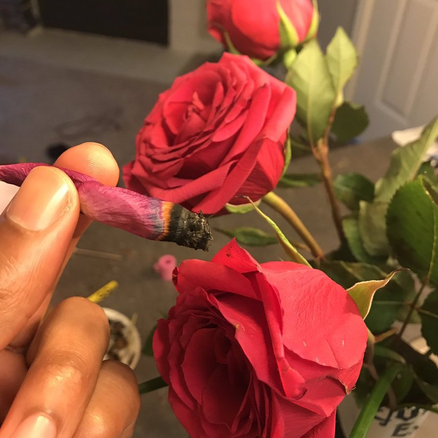 How To Roll A Rose Blunt Best Vibes Ever
