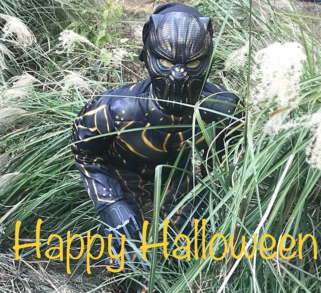 We hope you all had a fun Halloween! #southernatech #halloween #blackpanther #spooky