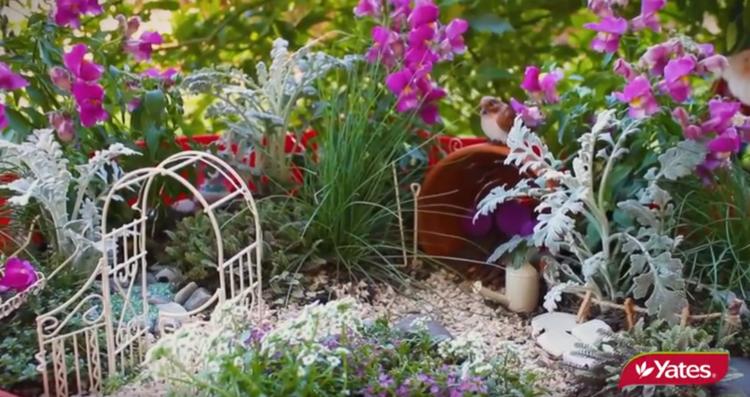 how to create a magical fairy garden - Fairy Garden Images