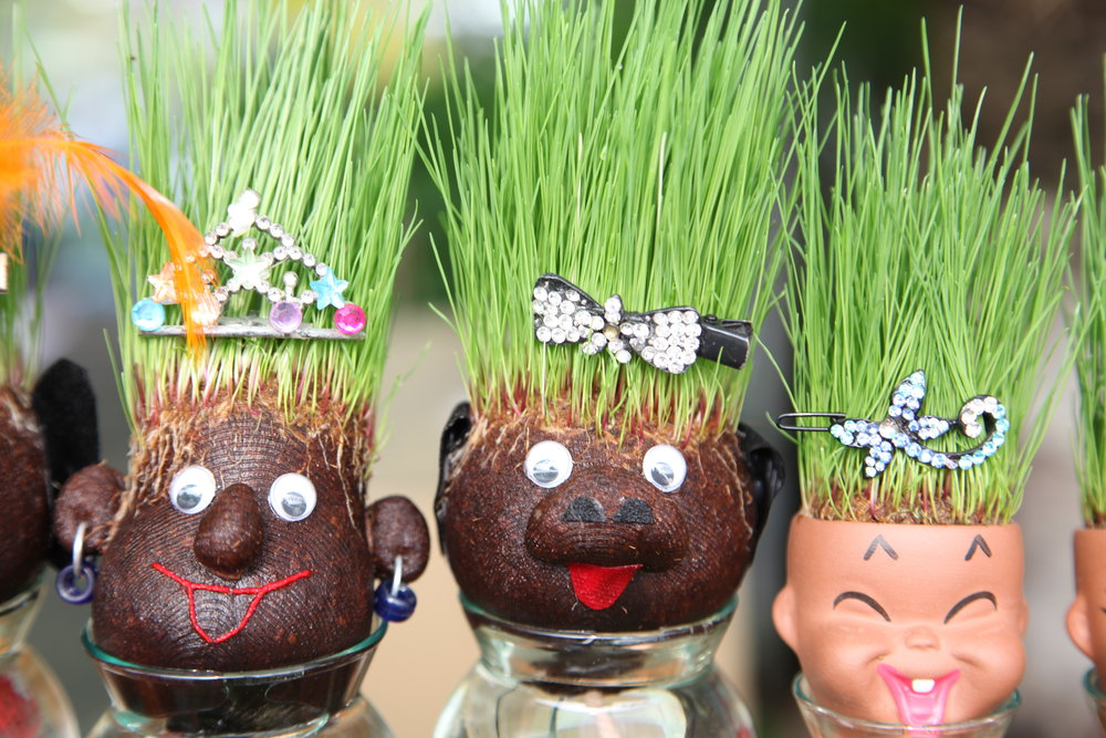 Make a family of Grass Heads for fun!