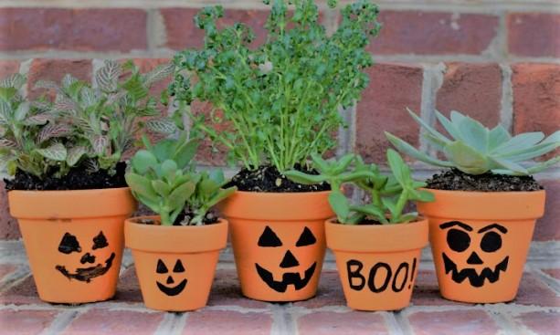 Jack-O-Lantern-Flower-Pots.jpg