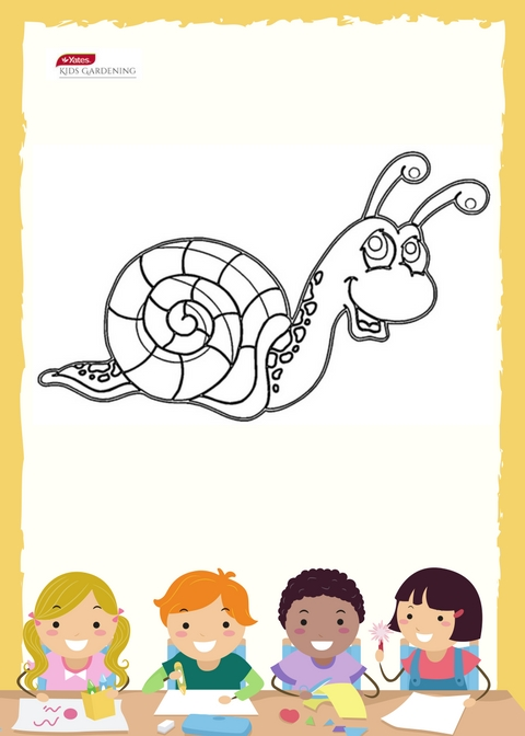 Colouring In - Snail image