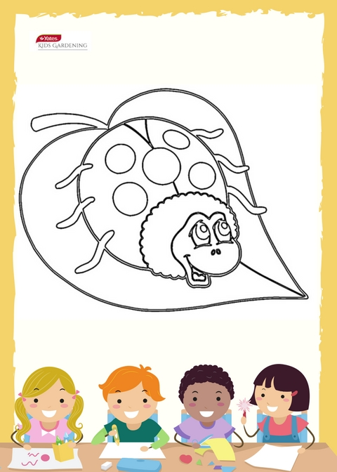 Lady Beetle - Free Kids Colouring In Sheet
