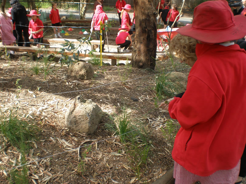 mps-outdoor-classroom1.jpg