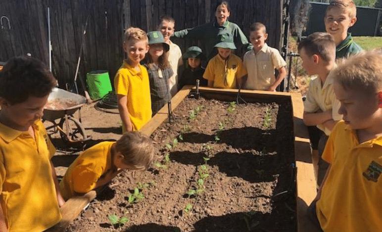 bendemeer-public-school-yates-growing-good-garden-grants1.png
