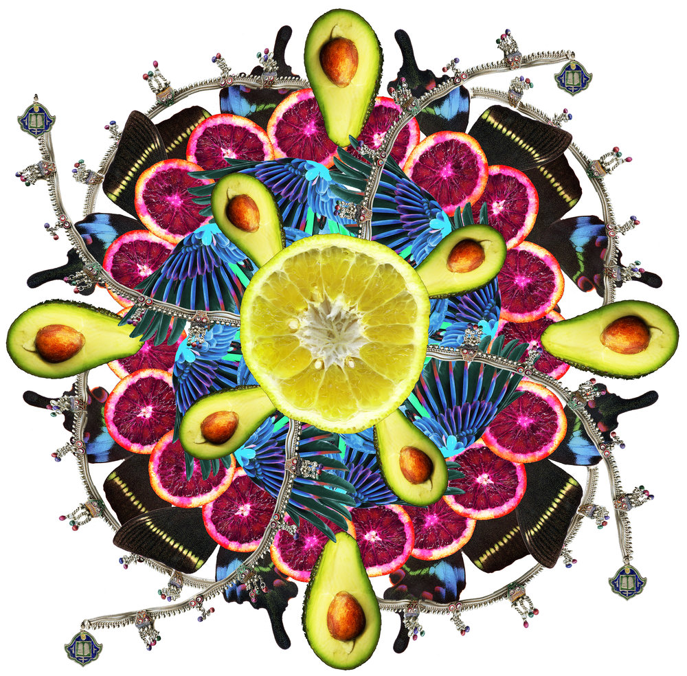 Citrus mandala Digital collage 44 x 44 in 2013