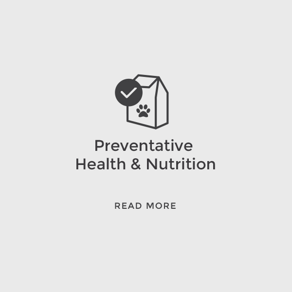 Preventative Health & Nutrition    Read More