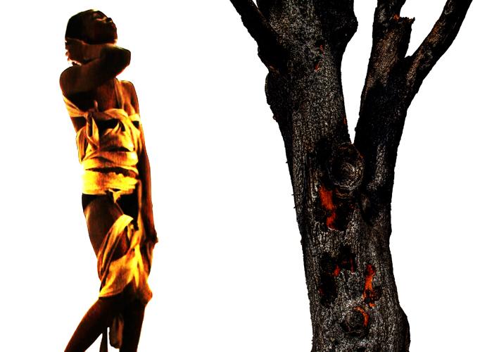 Dress&Tree.jpg
