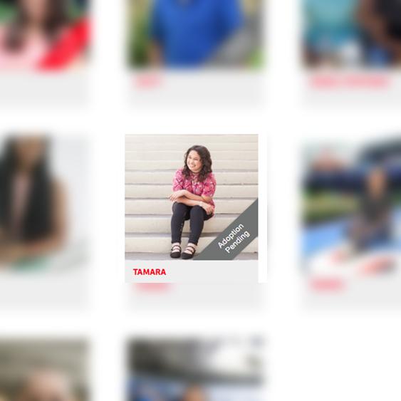 Adoption Photographer-Miami Photographers