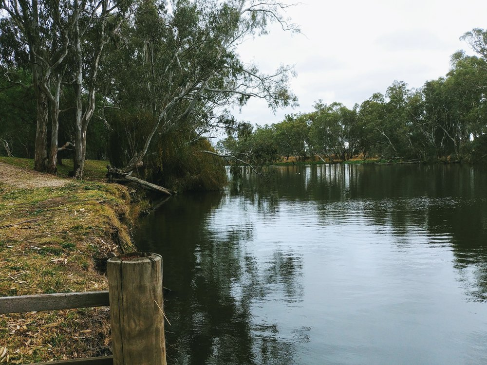 A walk along the Goulburn river to revitalise your senses