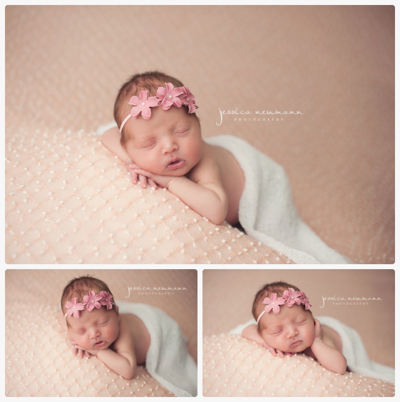 Studio posed newborn frederick md