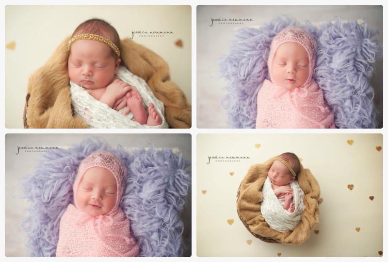 studio posed newborn frederick md