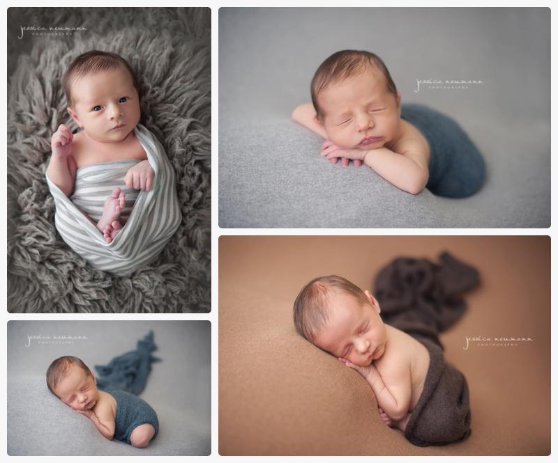 gaithersburg md posed newborn session