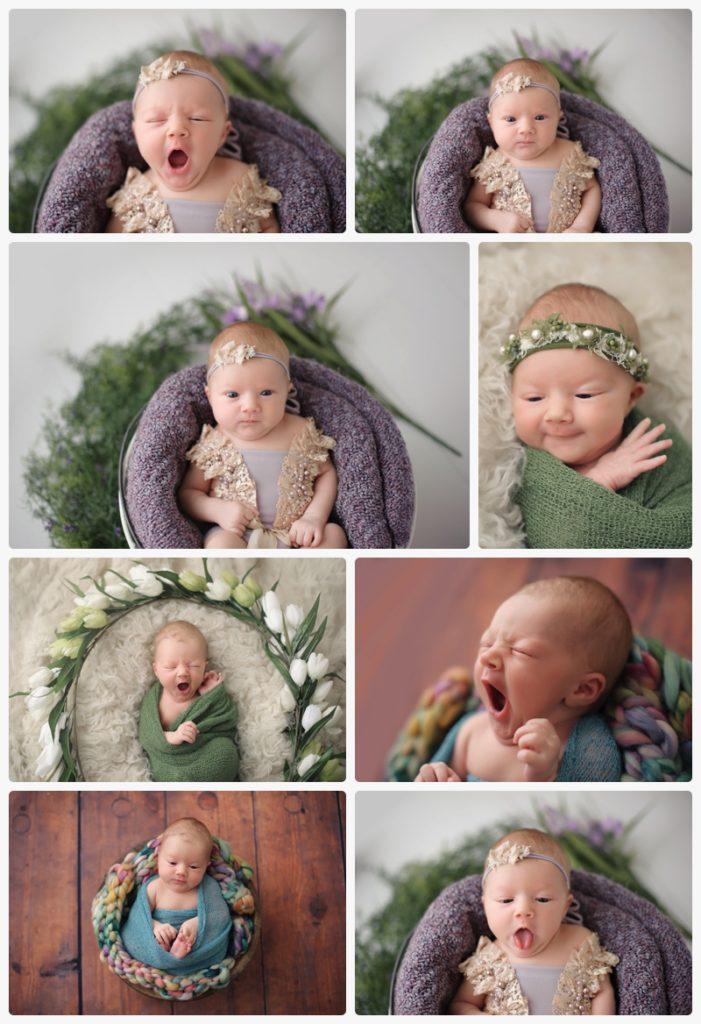 bethesda md posed studio newborn photography