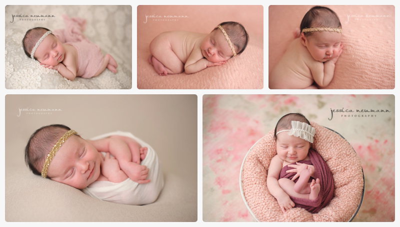newborn girl with pink and cream posed studio images