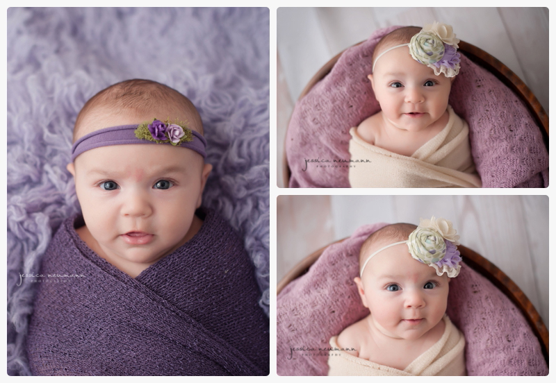 8 week old newborn session