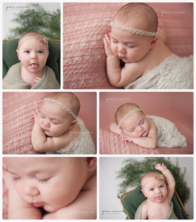 posed 8 week old in studio