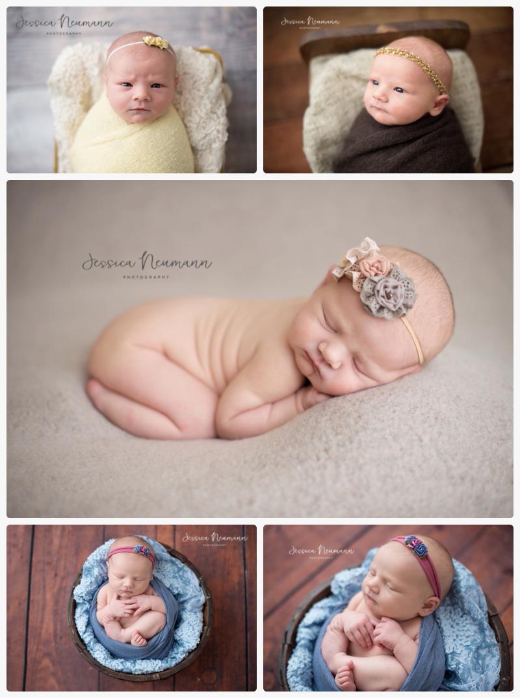 posed newborn in neutrals