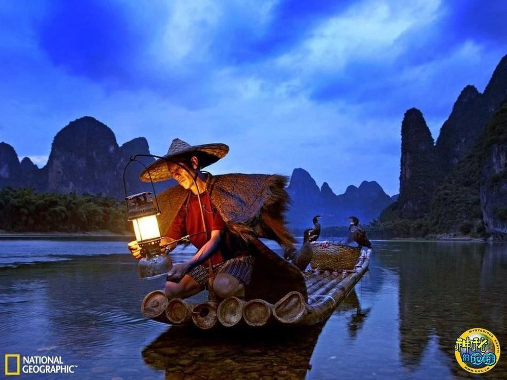 cormorant-fishing-at-night.jpg.1920x0.jpg