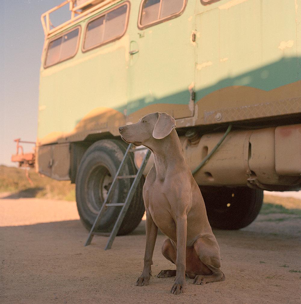 arno_truck2_1024_fb.jpg
