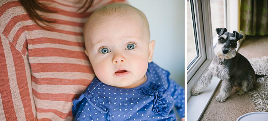 Pet & Baby Photographer-03