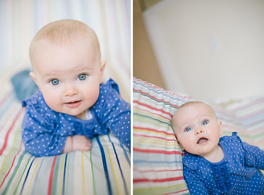 Pet & Baby Photographer-10
