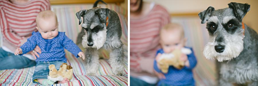 Pet & Baby Photographer-13