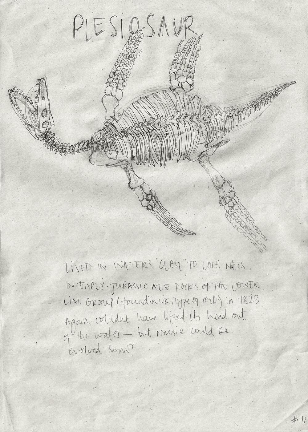 012-Plesiosaur.jpg