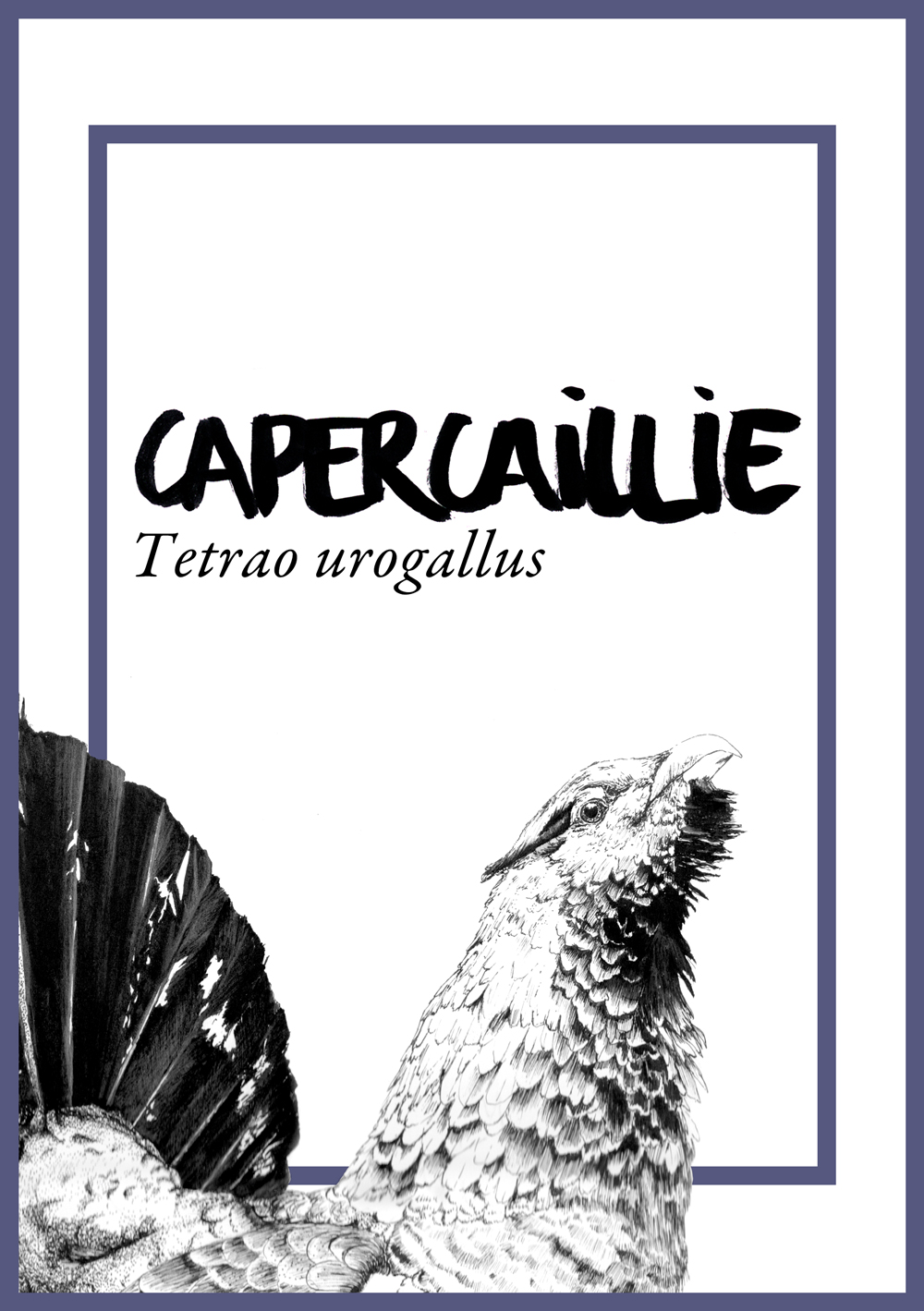 JC-CommissionsTableAnimals-capercaillie.jpg