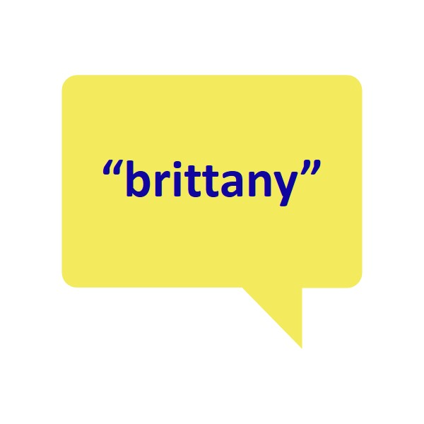 Brittany Quote Box.jpg