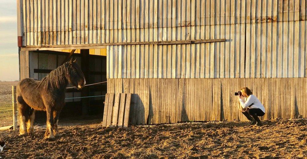 meg horse.jpg