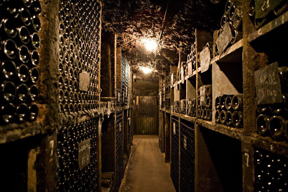 Burgundy0767.jpg